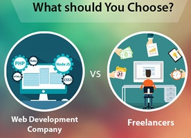 Web Development Company vs Freelancers: What should You