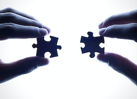 How to Make Startup Partnership Successful?