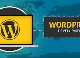 Baymediasoft: WordPress Development Company, Custom theme, plugin, USA, India