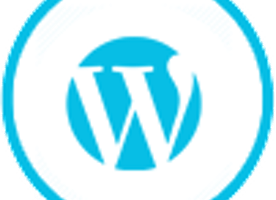 Hire WordPress Developer | Dedicated WordPress Developers for Hire | USA | India