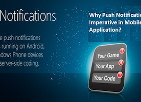 Why Push Notifications is Imperative in Mobile Application?