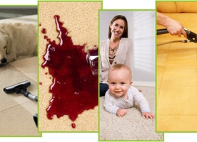 Venice Carpet Cleaning Experts