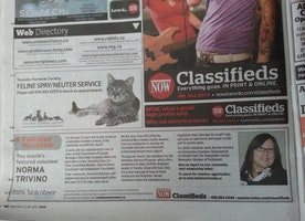 The Day a Toronto Newspaper Featured This Volunteer