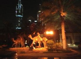Beautiful night in Dubai