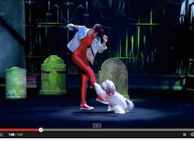 You will not believe your eyes when you see Ashleigh and Pudsey perform a routine to Thriller.