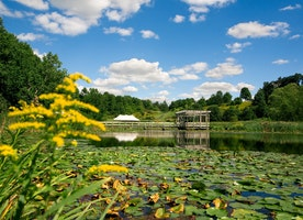Spring is coming: Things to do in Ithaca!