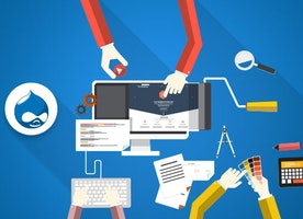 Check out the best top free themes for Drupal 7 website