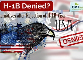 Looking for Your Alternatives or Options after H1B Visa Denial