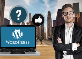 why WordPress is the Best Platform for Entrepreneurs? Baymediasoft