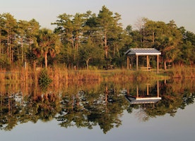 Best RV Parks In Florida: What you Need To Know