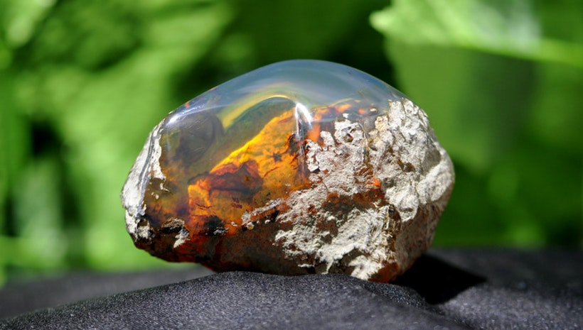 Reasons Why Green Amber Is Getting More Popular In The Past Decade