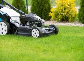 What Type of Lawn Mower is Right for Your Lawn?