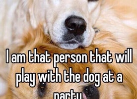 So true for all dog lovers!