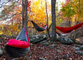Tips on how to choose the best Hammock