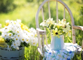 Five Best Landscaping Ideas