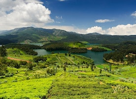 All You Need To Know About Ooty