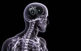 Are X-Rays Necessary? - Chiropractor Sydney   Sydney Chiropractic   Myotherapy