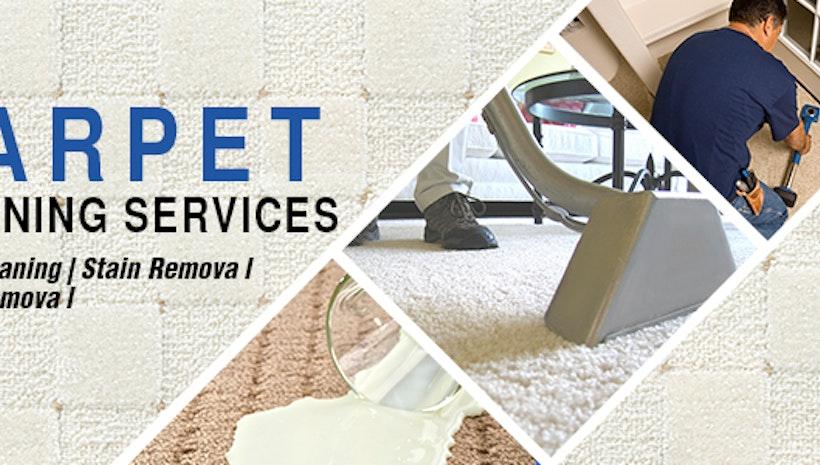 Carpet Cleaning Melbourne Mogul
