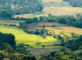 Mysore - The Popular South Indian destination