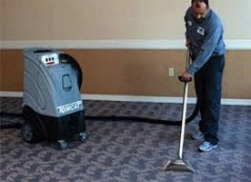 Friendly Dry Carpet Cleaning
