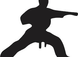 Understanding Karate Punches & Block in Brief