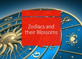 Zodiacs and their Blossoms