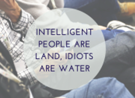 Intelligent People Are Land, Idiots Are Water