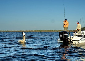 Ultimate Fishing Tips For Newbies