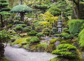 My Top 4 Breathtaking Gardens to Visit