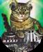 Cat Thomson 63