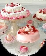 CakeLife